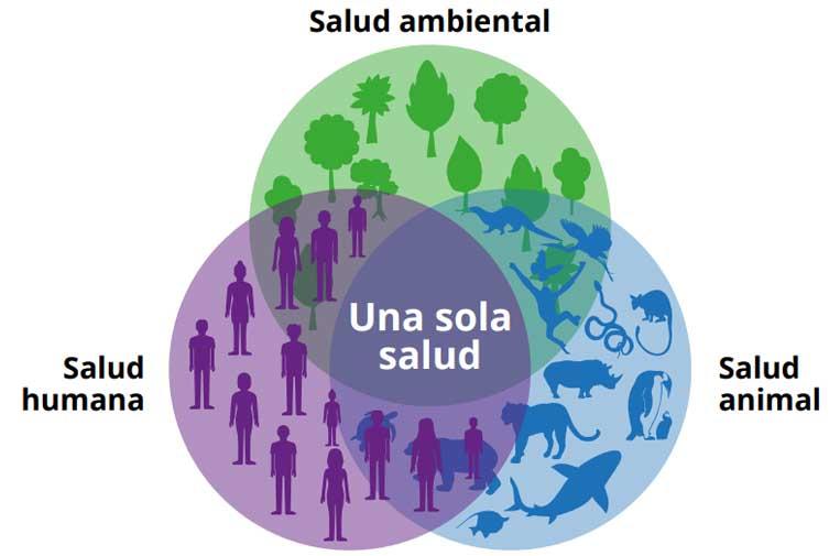 medio-ambiente-planeta-biodiversidad-coronavirus-vacuna-salud