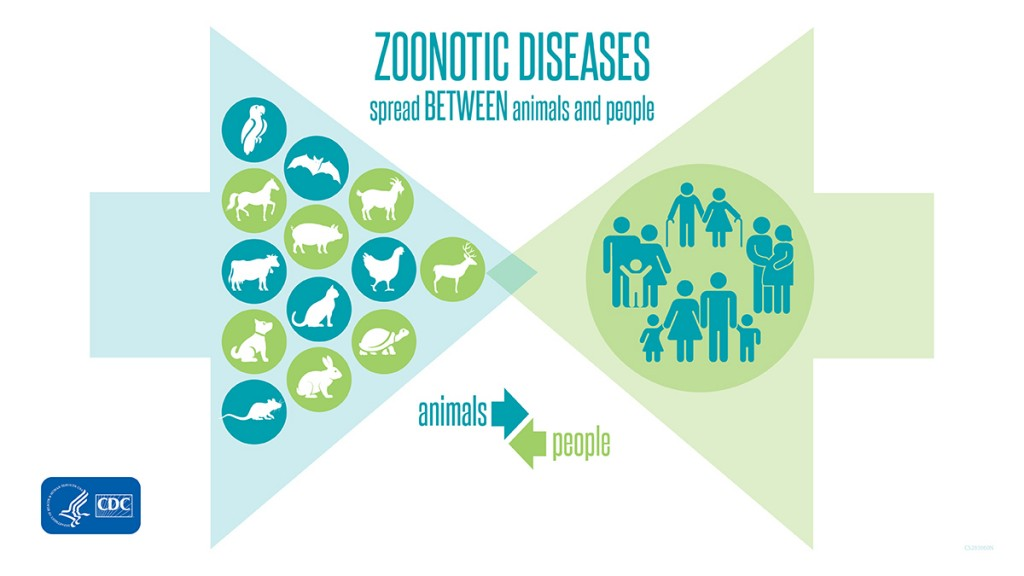 zoonotic-diseases-spread-between-animals-and-people-twitter